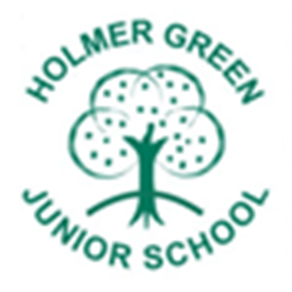 Holmer Green Junior School